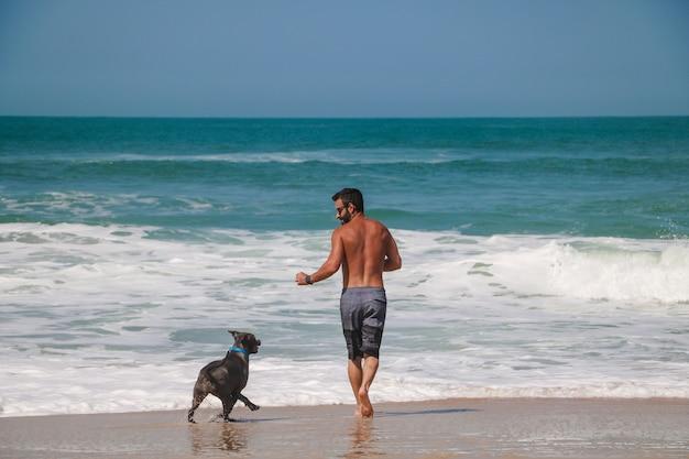 Homem correndo e brincando na praia com seu cachorro pit bull. dia de sol, com céu azul e mar cristalino.