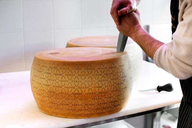 Homem cortar abrir uma roda de queijo grana padano