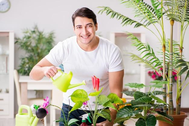 Homem cuidando de plantas em casa