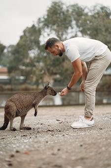 Homem da reserva está brincando com um canguru