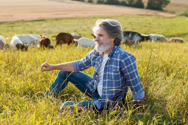 Homem de alto ângulo com cabras na fazenda