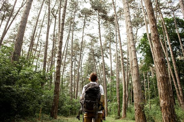 Homem de baixo ângulo na floresta