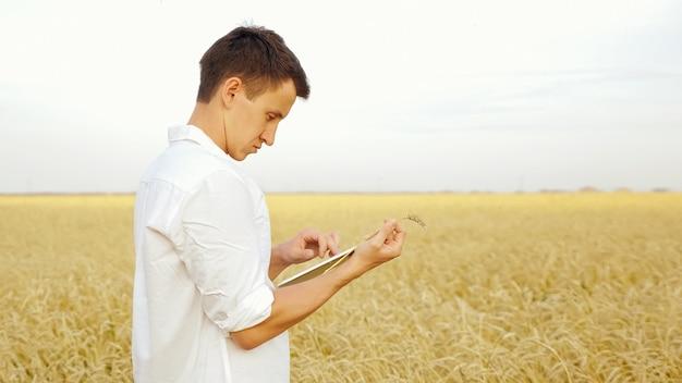 Homem de camisa branca com um tablet segurando uma espiga de trigo em um campo, copyspace