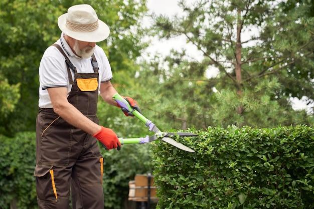 Homem de chapéu que corta arbustos cobertos de vegetação.