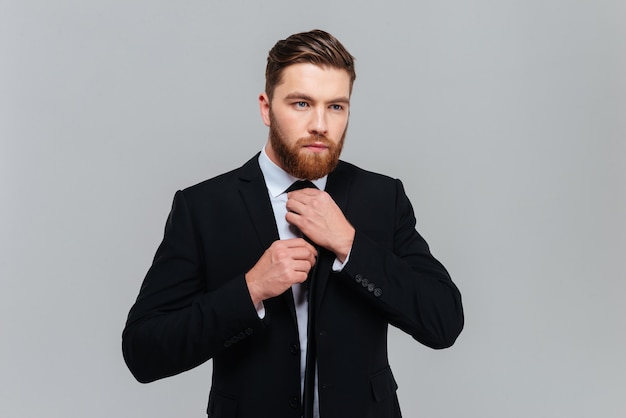 Homem de negócios bacana em um terno preto amarrando uma gravata no estúdio. fundo cinza isolado