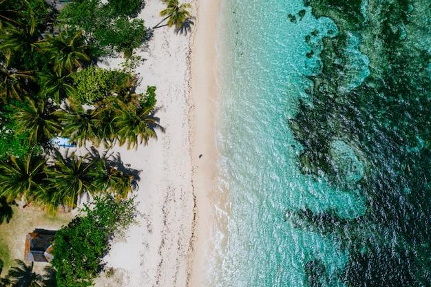 Homem de pé na praia e apreciando o lugar tropical com vista. cores do mar do caribe e palmeiras. conceito sobre viagens e estilo de vida