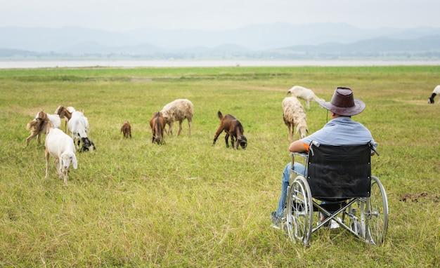 Homem deficiente em uma cadeira de rodas sozinho na fazenda
