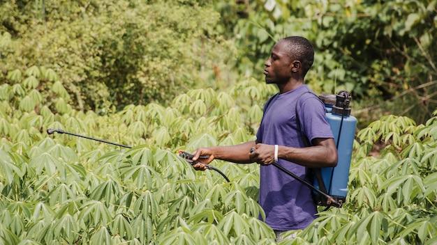 Homem do campo desinfetando o campo