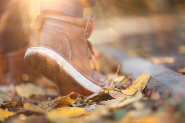 Homem do parque outono caminhando ao longo de uma folhagem de caminho