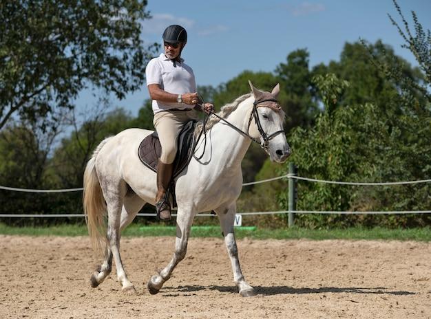Homem e cavalo