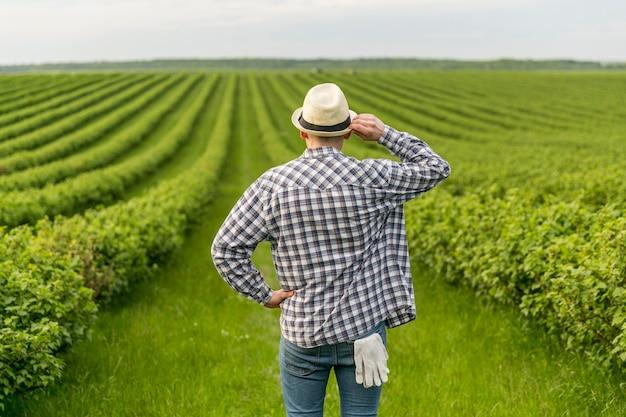Homem em terras agrícolas