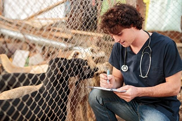 Homem em uniforme de veterinário sentado nas ancas perto de um cercado com cães e fazendo anotações na prancheta enquanto trabalha em um abrigo de animais