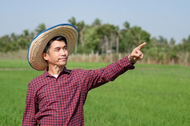 Homem fazendeiro asiático sorrindo e erguendo a mão apontando para uma fazenda de arroz verde