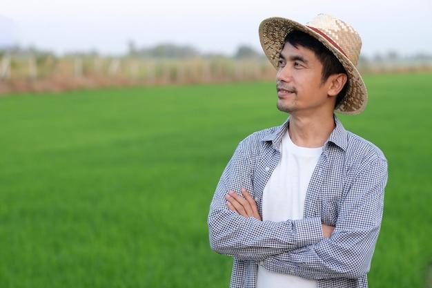 Homem fazendeiro asiático sorrindo e olhando fazenda de arroz verde