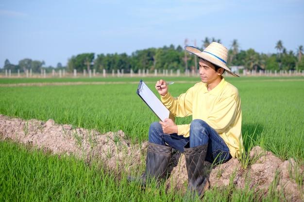 Homem fazendeiro asiático usa camisa amarela sentado e escrevendo papel a bordo na fazenda de arroz verde.