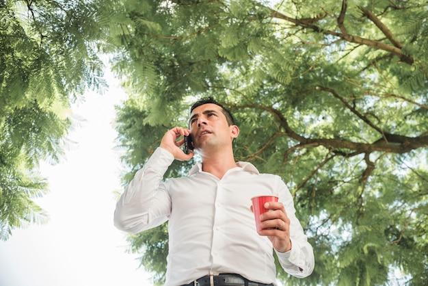Homem, fazendo telefonema, abaixo, árvore