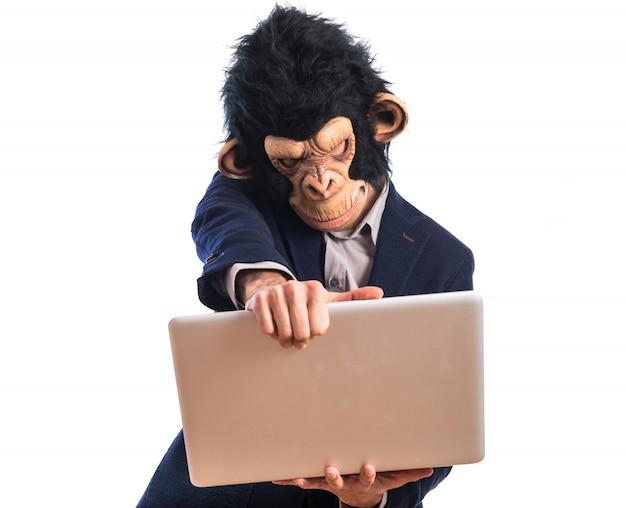 Homem frustrado do macaco que prende um portátil