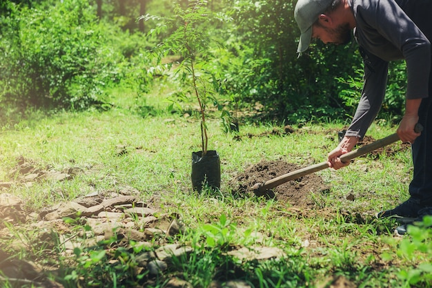 Homem hipster usando enxada para cavar buraco plantando árvore ao ar livre.