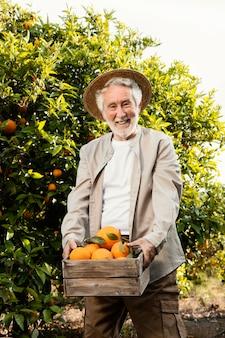Homem idoso em plantação de laranjeiras