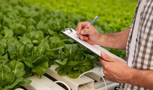 Homem irreconhecível com camisa quadriculada escrevendo na prancheta perto de bandejas hidropônicas com brotos verdes na estufa