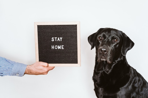 Homem irreconhecível, segurando a placa da carta com mensagem de estadia em casa. além de labrador preto lindo. conceito pandêmico 2019 de coronavírus pandêmico