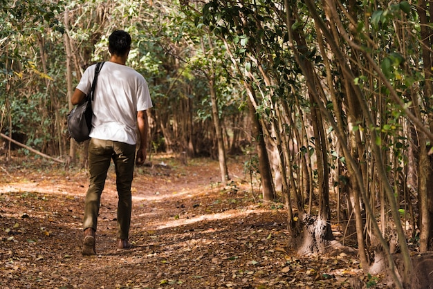 Homem jovem, andar, em, a, madeiras