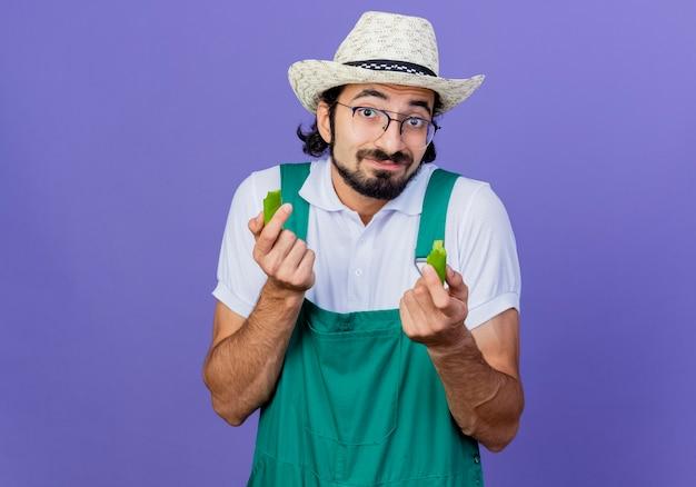 Homem jovem jardineiro barbudo vestindo macacão e chapéu segurando metades de pimenta malagueta verde olhando para a frente sorrindo em pé sobre a parede azul