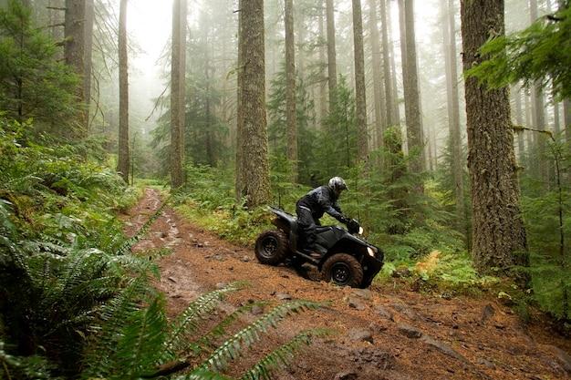Homem, levando, atv, declive, íngreme, floresta, colina
