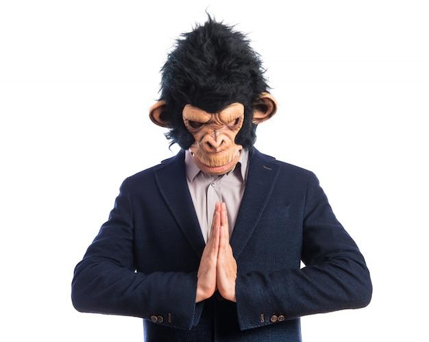 Homem macaco que suplica sobre fundo branco