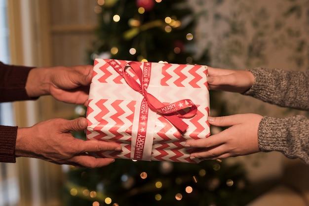Homem mulher, segurando, caixa presente, em, envoltório, perto, árvore natal