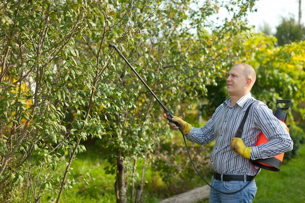 Homem pulverizando galhos de árvores