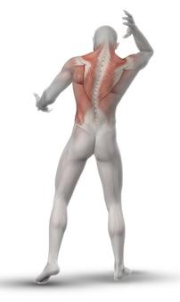 Homem que estica os músculos das costas
