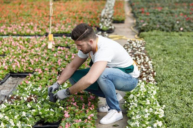 Homem que trabalha em uma loja de jardim