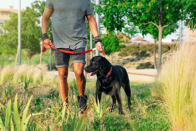 Homem se divertindo e brincando com seu cachorro no parque.