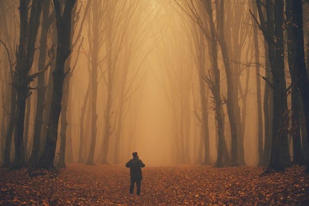 Homem se perdeu em uma floresta nebulosa e assustadora