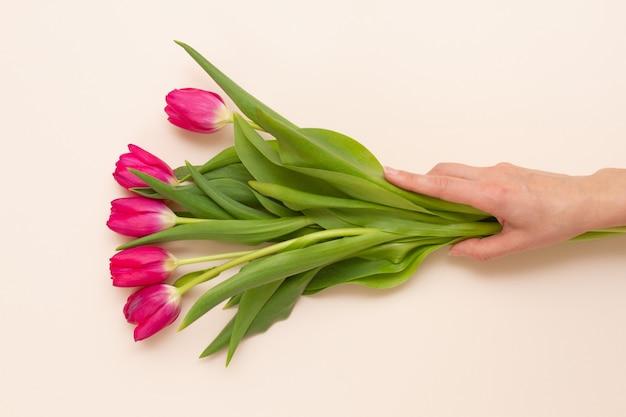 Homem segura com a mão um buquê de tenras tulipas vermelhas frescas com folhas verdes em um fundo rosa pastel