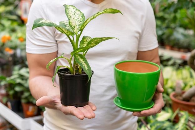 Homem segurando a planta da casa e vaso de flores