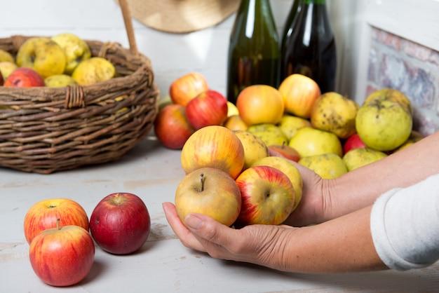 Homem segurando as lindas maçãs da normandia