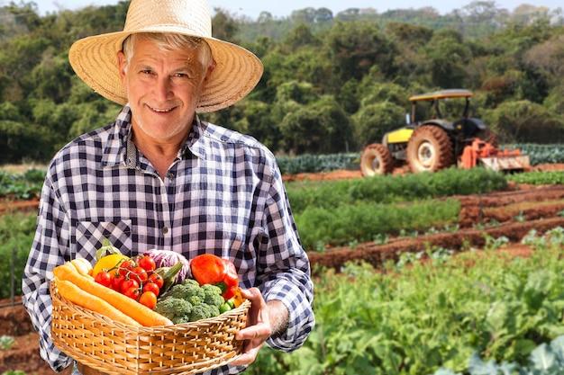 Homem segurando cesta com vegetais orgânicos saudáveis. fundo de plantação.