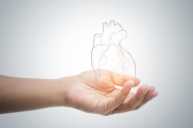 Homem, segurando, coração, ilustração, contra, cinzento, parede