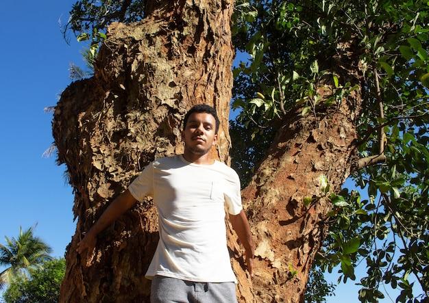 Homem segurando e protegendo o tronco de uma grande árvore em um dia ensolarado