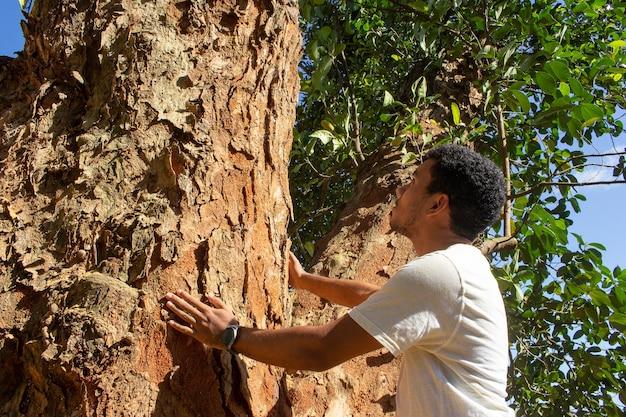 Homem segurando o tronco de uma grande árvore em um dia ensolarado