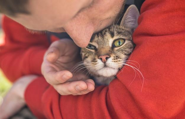 Homem segurando strret gato cinza sem-teto com grandes olhos verde-oliva. amizade de animais e pessoas