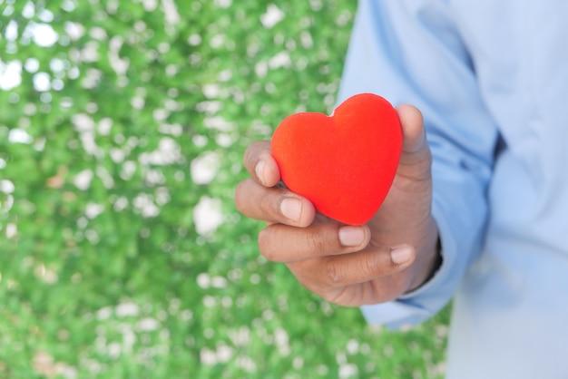 Homem segurando um coração vermelho sobre fundo verde.