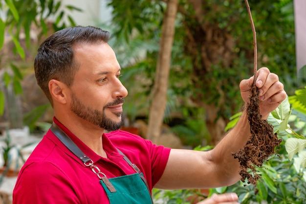 Homem segurando uma árvore jovem e prepare-se para plantar no solo.