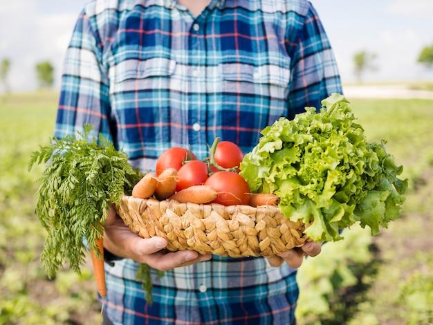 Homem segurando uma cesta cheia de legumes