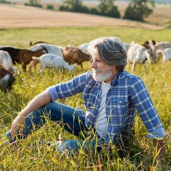 Homem sênior com cabras na fazenda