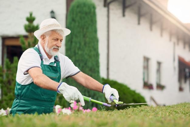 Homem sênior que corta arbustos cobertos de vegetação.