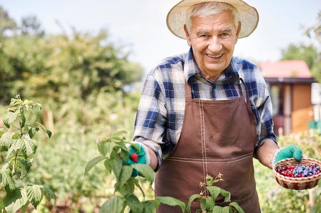 Homem sênior trabalhando no campo com frutas