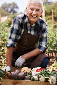 Homem sênior trabalhando no campo com vegetais Foto gratuita